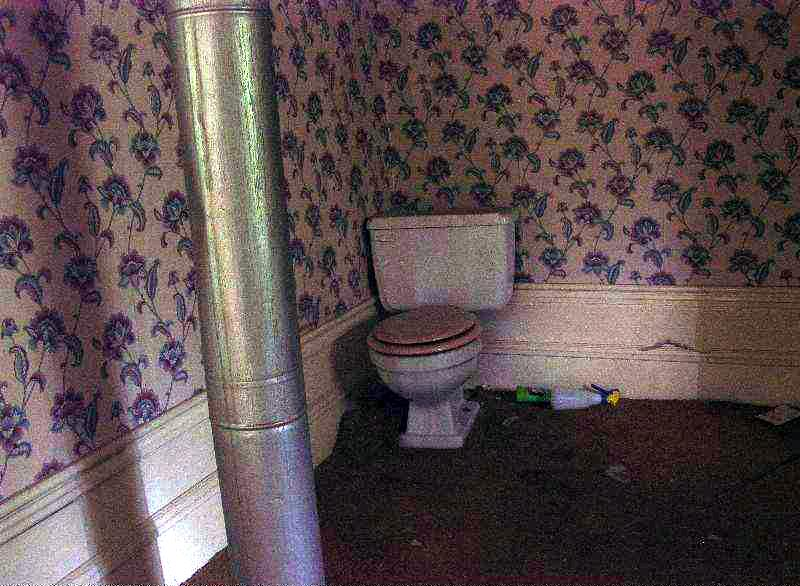 A Toilet in use in a living room
